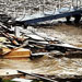 Rosie O'Donnell Tweets Pics of Damage Hurricane Sandy did to Her Hudson River Home