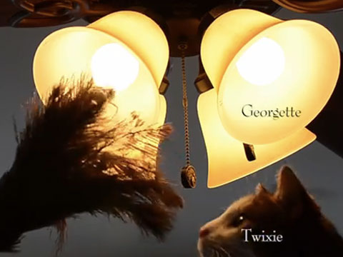 WATCH: 'Downton Tabby' the Downton Abbey Intro Made Better with CATS!