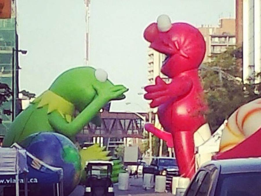 This is a photo of Elmo and Kermit.