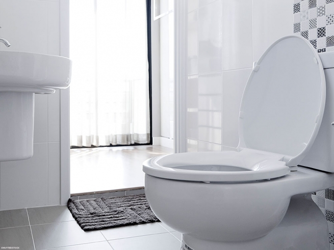4. After your hole, clean the toilet.